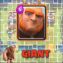 Giant – the main card on the first Arenas!